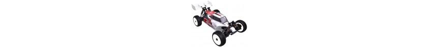 ETO821 1/8 4WD Racing Buggy PRO