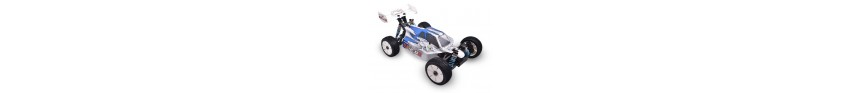 EX2.0RTR  1/8 Buggy