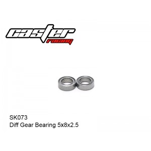 SK073  Diff Gear Bearing 5x8x2.5