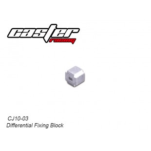 CJ10-03 CJ10 Differential Fixing Block