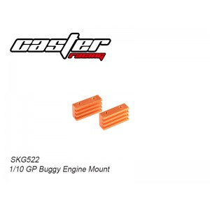 SKG522 1/10 GP Buggy Engine Mount